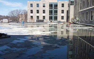 EFVM® Testing vs. Flood Testing